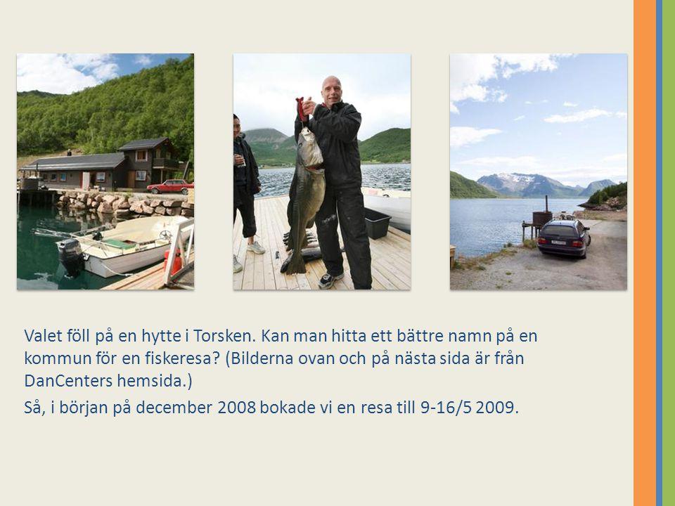 Valet föll på en hytte i Torsken. Kan man hitta ett bättre namn på en kommun för en fiskeresa? (Bilderna ovan och på nästa sida är från DanCenters hem