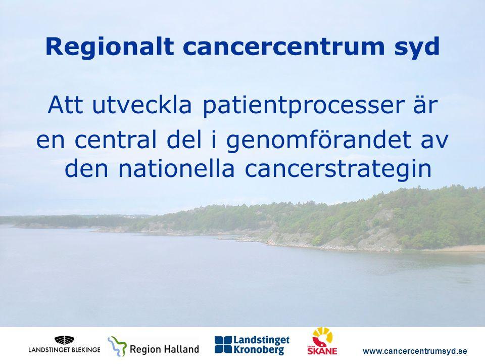www.cancercentrumsyd.se Regionalt cancercentrum syd Att utveckla patientprocesser är en central del i genomförandet av den nationella cancerstrategin