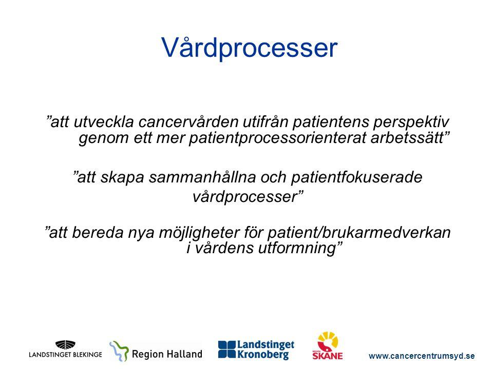 """www.cancercentrumsyd.se """"att utveckla cancervården utifrån patientens perspektiv genom ett mer patientprocessorienterat arbetssätt"""" """"att skapa sammanh"""