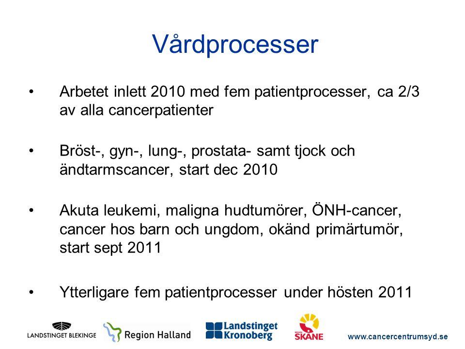 www.cancercentrumsyd.se Arbetet inlett 2010 med fem patientprocesser, ca 2/3 av alla cancerpatienter Bröst-, gyn-, lung-, prostata- samt tjock och änd