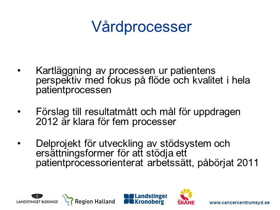 www.cancercentrumsyd.se Kartläggning av processen ur patientens perspektiv med fokus på flöde och kvalitet i hela patientprocessen Förslag till result