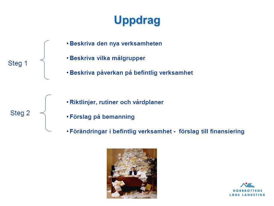 Uppdrag Beskriva den nya verksamheten Beskriva vilka målgrupper Beskriva påverkan på befintlig verksamhet Riktlinjer, rutiner och vårdplaner Förslag på bemanning Förändringar i befintlig verksamhet - förslag till finansiering Steg 1 Steg 2