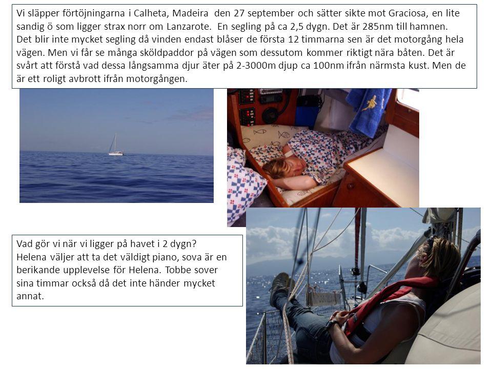 Vi släpper förtöjningarna i Calheta, Madeira den 27 september och sätter sikte mot Graciosa, en lite sandig ö som ligger strax norr om Lanzarote. En s