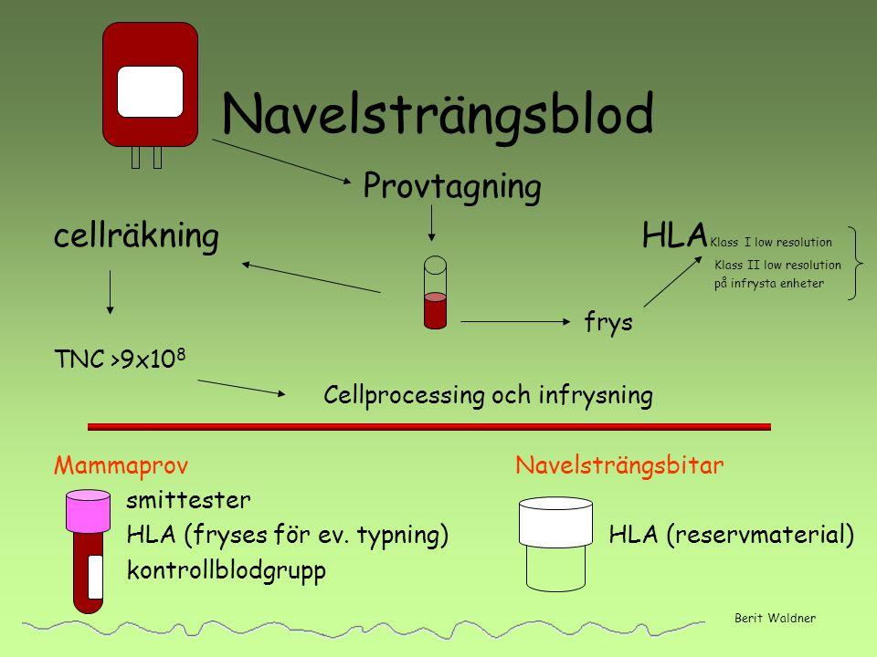 Navelsträngsblod Provtagning cellräkning HLA Klass I low resolution Klass II low resolution på infrysta enheter frys TNC >9x10 8 Cellprocessing och in