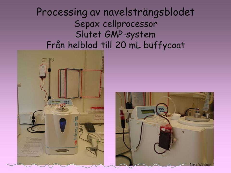 Processing av navelsträngsblodet Sepax cellprocessor Slutet GMP-system Från helblod till 20 mL buffycoat Berit Waldner