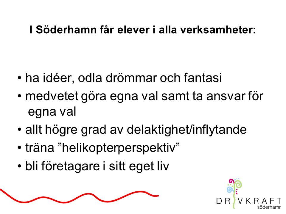 I Söderhamn får elever i alla verksamheter: ha idéer, odla drömmar och fantasi medvetet göra egna val samt ta ansvar för egna val allt högre grad av delaktighet/inflytande träna helikopterperspektiv bli företagare i sitt eget liv