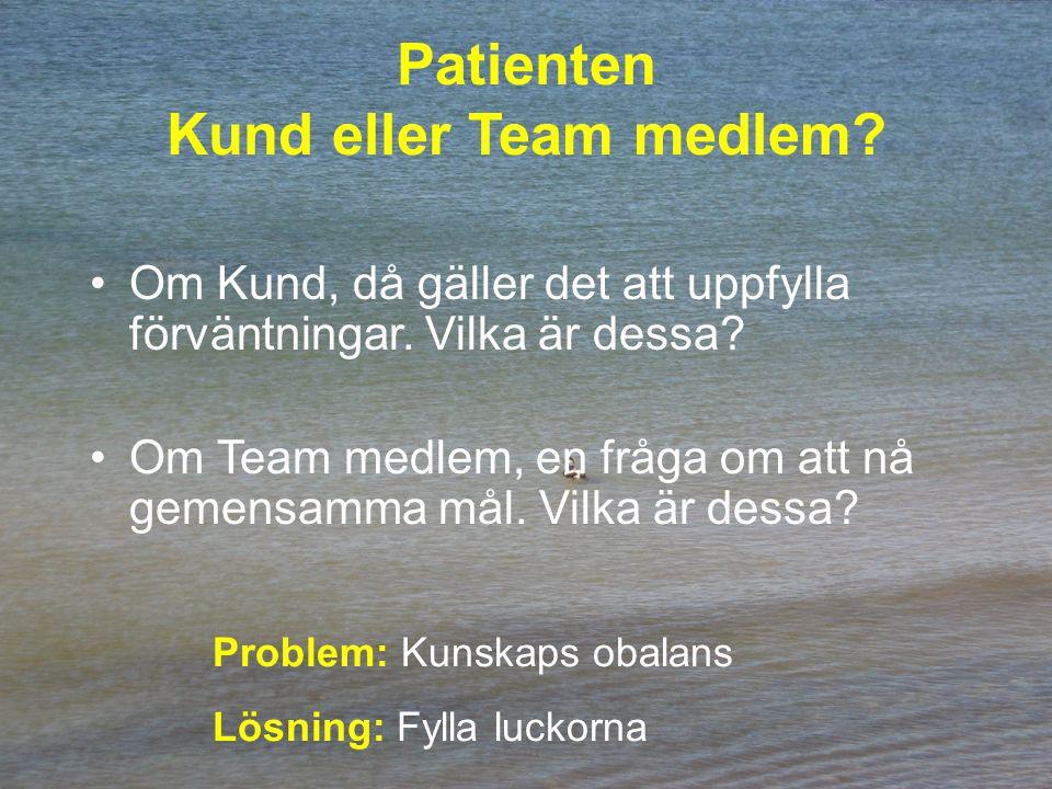 Patienten Kund eller Team medlem. Om Kund, då gäller det att uppfylla förväntningar.
