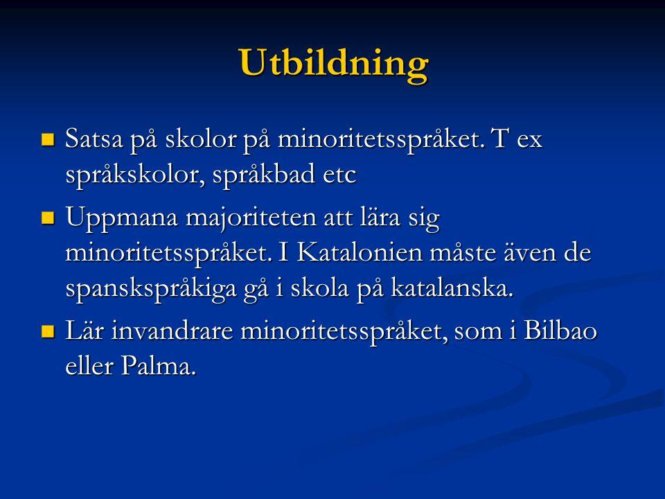 Utbildning Satsa på skolor på minoritetsspråket.