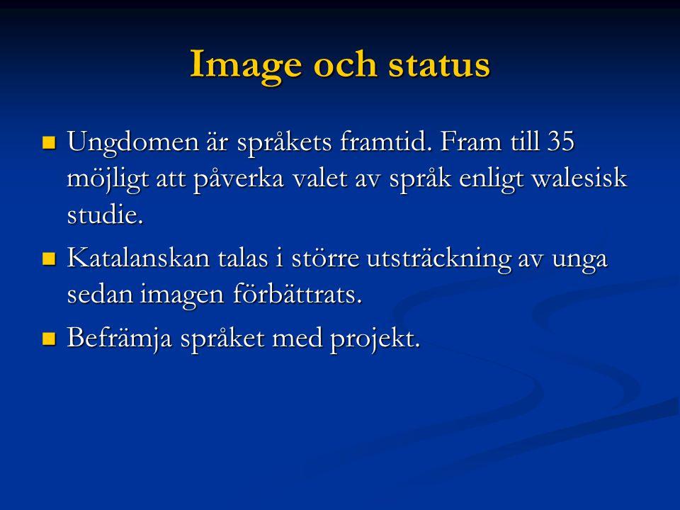 Image och status Ungdomen är språkets framtid.