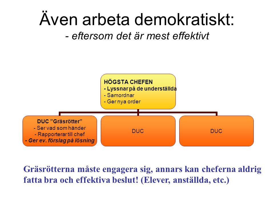 Även arbeta demokratiskt: - eftersom det är mest effektivt Gräsrötterna måste engagera sig, annars kan cheferna aldrig fatta bra och effektiva beslut.