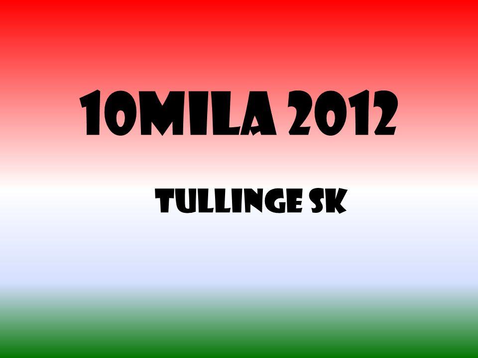 10mila 2012 Tullinge SK