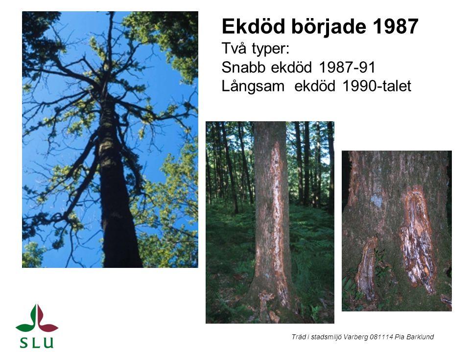 Ekdöd började 1987 Två typer: Snabb ekdöd 1987-91 Långsam ekdöd 1990-talet Träd i stadsmiljö Varberg 081114 Pia Barklund