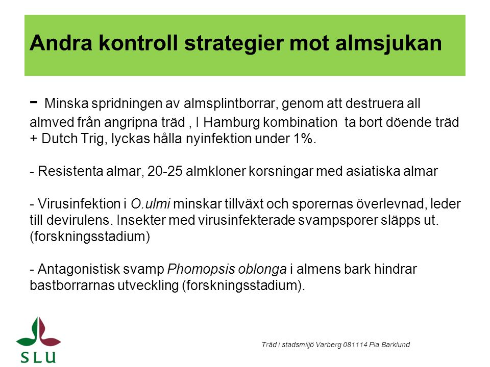 Andra kontroll strategier mot almsjukan - Minska spridningen av almsplintborrar, genom att destruera all almved från angripna träd, I Hamburg kombinat