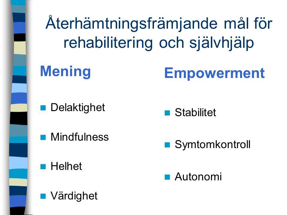 Återhämtningsfrämjande mål för rehabilitering och självhjälp Mening Delaktighet Mindfulness Helhet Värdighet Empowerment Stabilitet Symtomkontroll Aut
