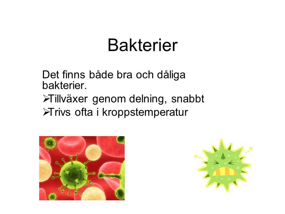 Bakterier Det finns både bra och dåliga bakterier.