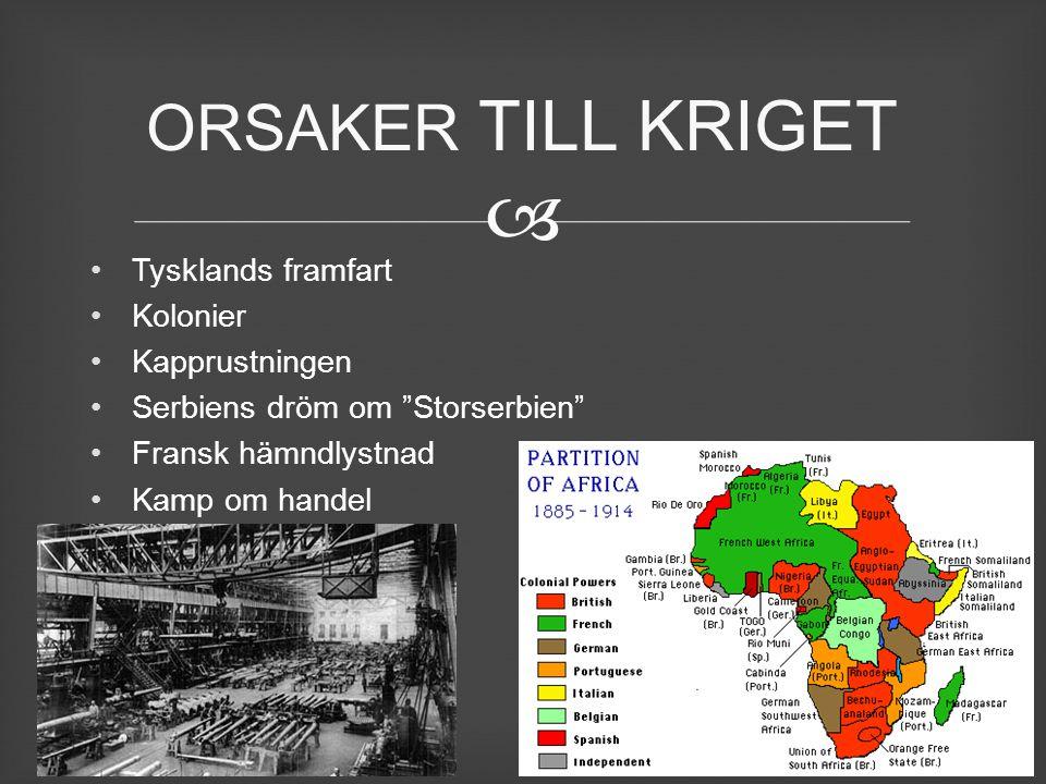 """ Tysklands framfart Kolonier Kapprustningen Serbiens dröm om """"Storserbien"""" Fransk hämndlystnad Kamp om handel ORSAKER TILL KRIGET"""