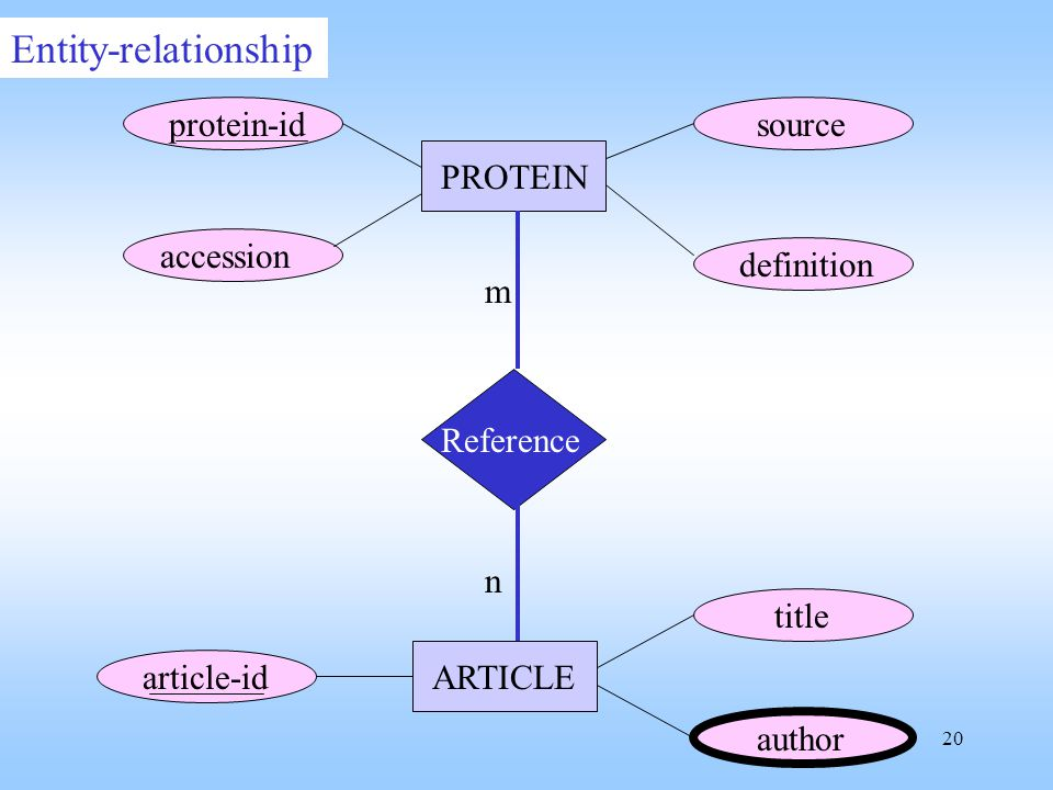 20 Reference protein-id accession definition source article-id title author PROTEIN ARTICLE m n Entity-relationship