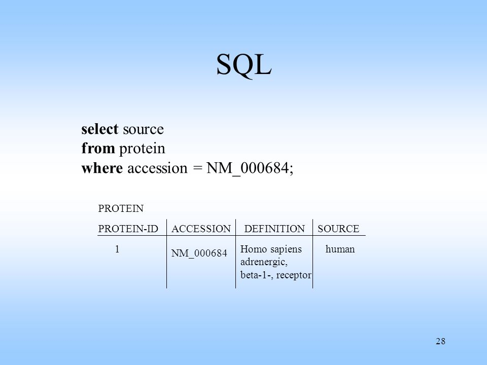 28 SQL select source from protein where accession = NM_000684; PROTEIN ACCESSIONSOURCEDEFINITION Homo sapiens adrenergic, beta-1-, receptor NM_000684 human PROTEIN-ID 1