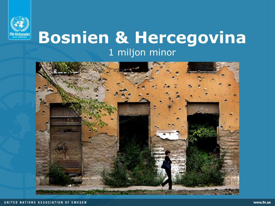 Bosnien & Hercegovina 1 miljon minor