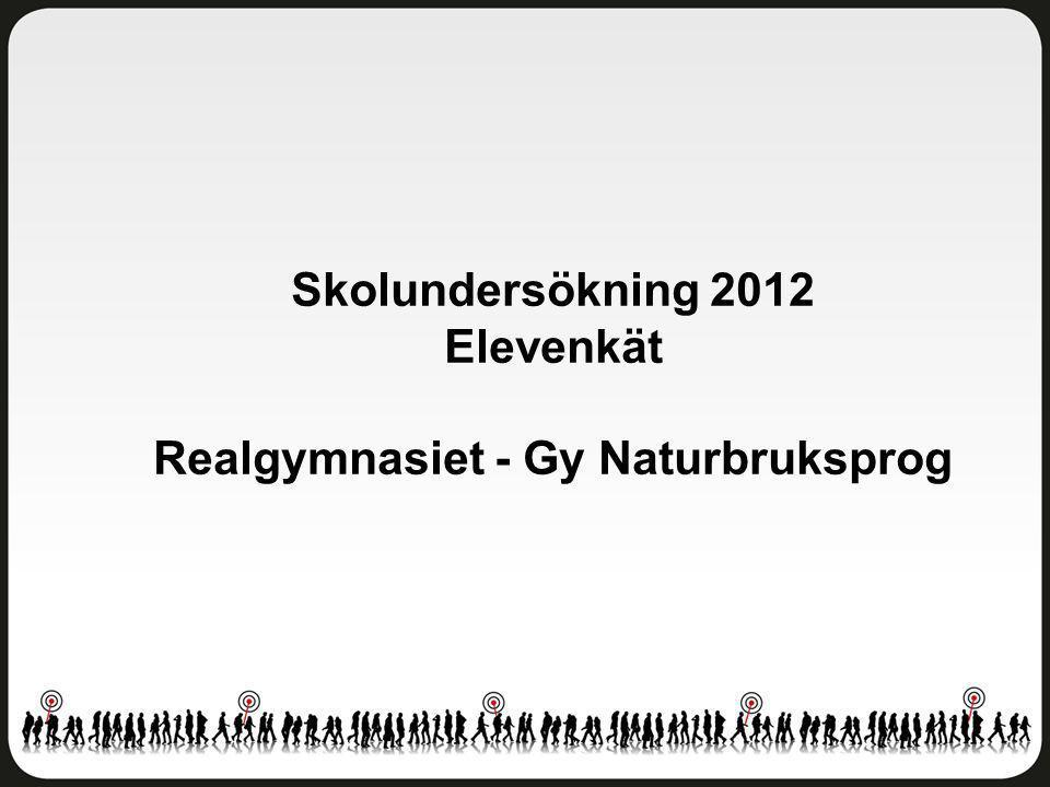 Skolundersökning 2012 Elevenkät Realgymnasiet - Gy Naturbruksprog
