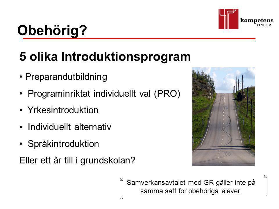 Preparandutbildning Programinriktat individuellt val (PRO) Yrkesintroduktion Individuellt alternativ Språkintroduktion Eller ett år till i grundskolan