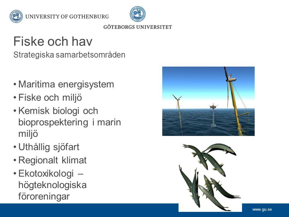 www.gu.se Fiske och hav Strategiska samarbetsområden Maritima energisystem Fiske och miljö Kemisk biologi och bioprospektering i marin miljö Uthållig sjöfart Regionalt klimat Ekotoxikologi – högteknologiska föroreningar