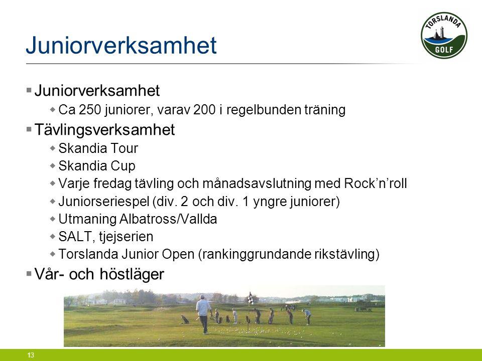 13 Juniorverksamhet  Juniorverksamhet  Ca 250 juniorer, varav 200 i regelbunden träning  Tävlingsverksamhet  Skandia Tour  Skandia Cup  Varje fr