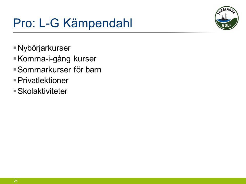 25 Pro: L-G Kämpendahl  Nybörjarkurser  Komma-i-gång kurser  Sommarkurser för barn  Privatlektioner  Skolaktiviteter