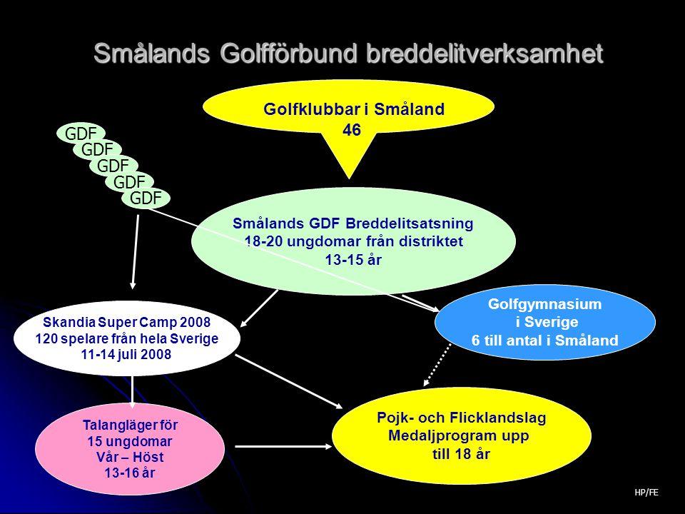 Smålands Golfförbund breddelitverksamhet Golfklubbar i Småland 46 Smålands GDF Breddelitsatsning 18-20 ungdomar från distriktet 13-15 år Skandia Super Camp 2008 120 spelare från hela Sverige 11-14 juli 2008 Golfgymnasium i Sverige 6 till antal i Småland Talangläger för 15 ungdomar Vår – Höst 13-16 år Pojk- och Flicklandslag Medaljprogram upp till 18 år GDF HP/FE