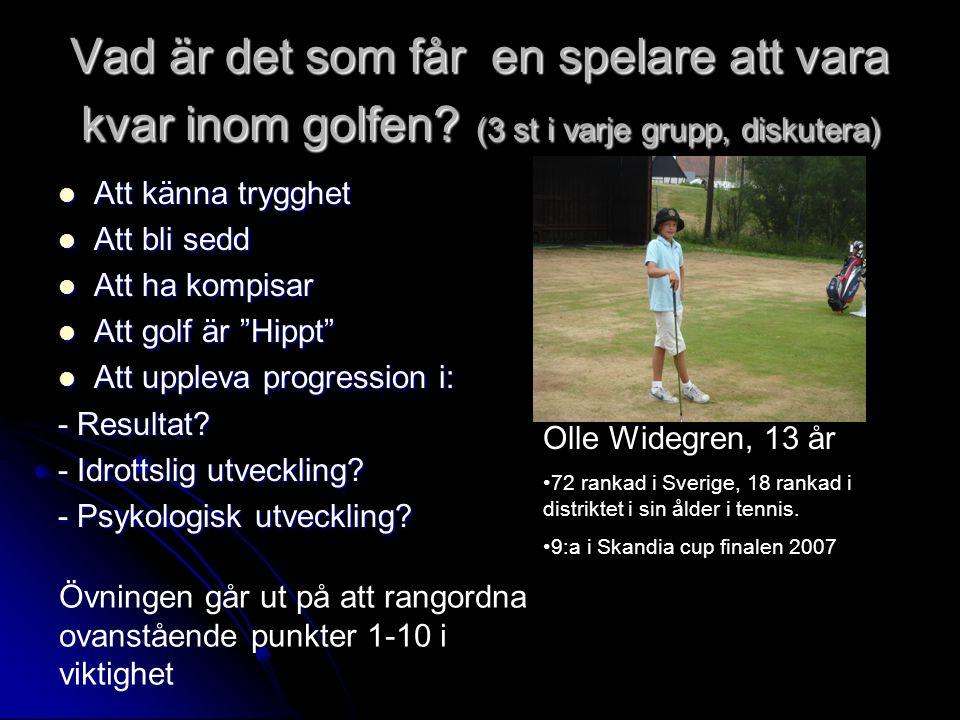 Vad är det som får en spelare att vara kvar inom golfen.