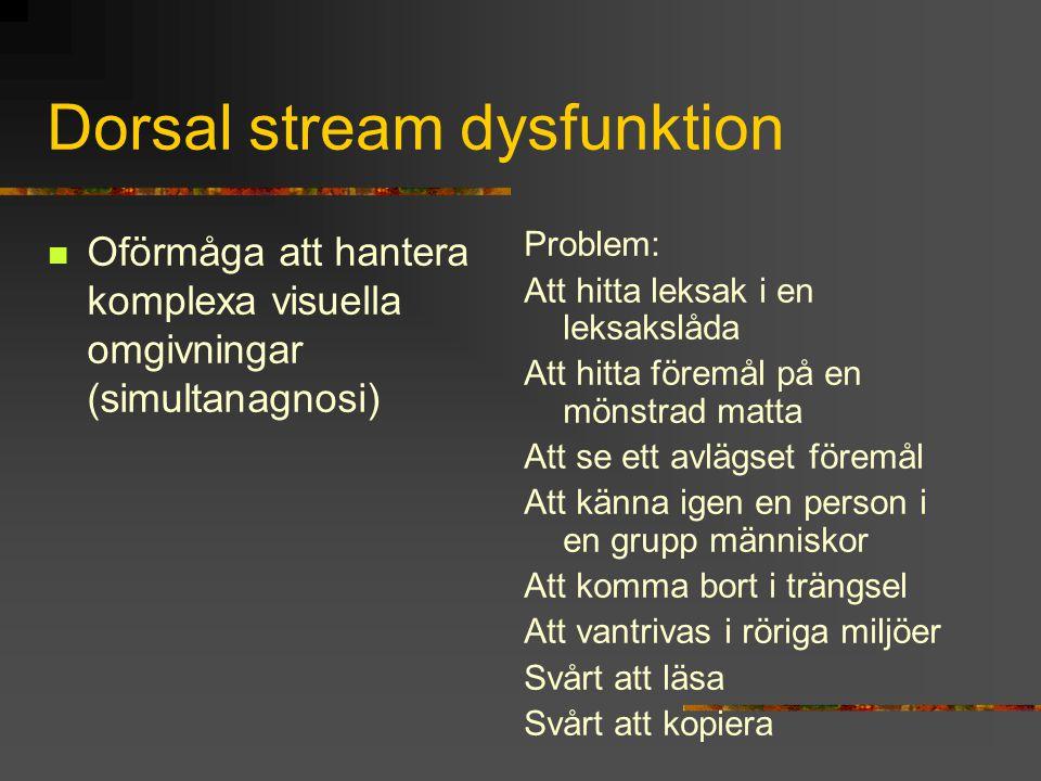 Dorsal stream dysfunktion Oförmåga att hantera komplexa visuella omgivningar (simultanagnosi) Problem: Att hitta leksak i en leksakslåda Att hitta för