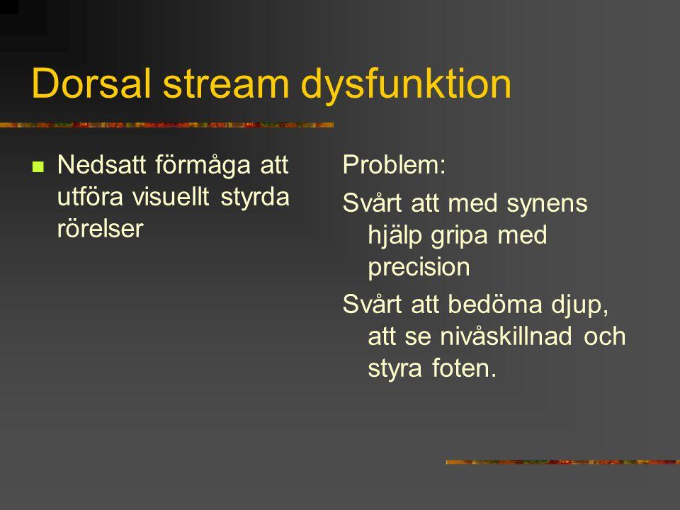 Dorsal stream dysfunktion Nedsatt förmåga att utföra visuellt styrda rörelser Problem: Svårt att med synens hjälp gripa med precision Svårt att bedöma