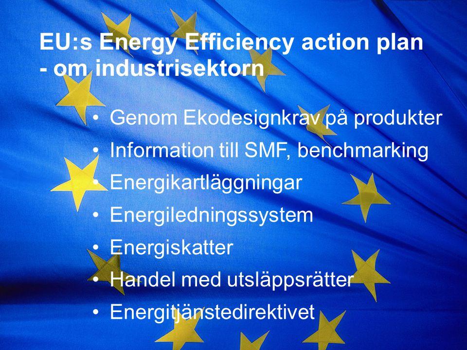 EU:s Energy Efficiency action plan - om industrisektorn Genom Ekodesignkrav på produkter Information till SMF, benchmarking Energikartläggningar Energiledningssystem Energiskatter Handel med utsläppsrätter Energitjänstedirektivet
