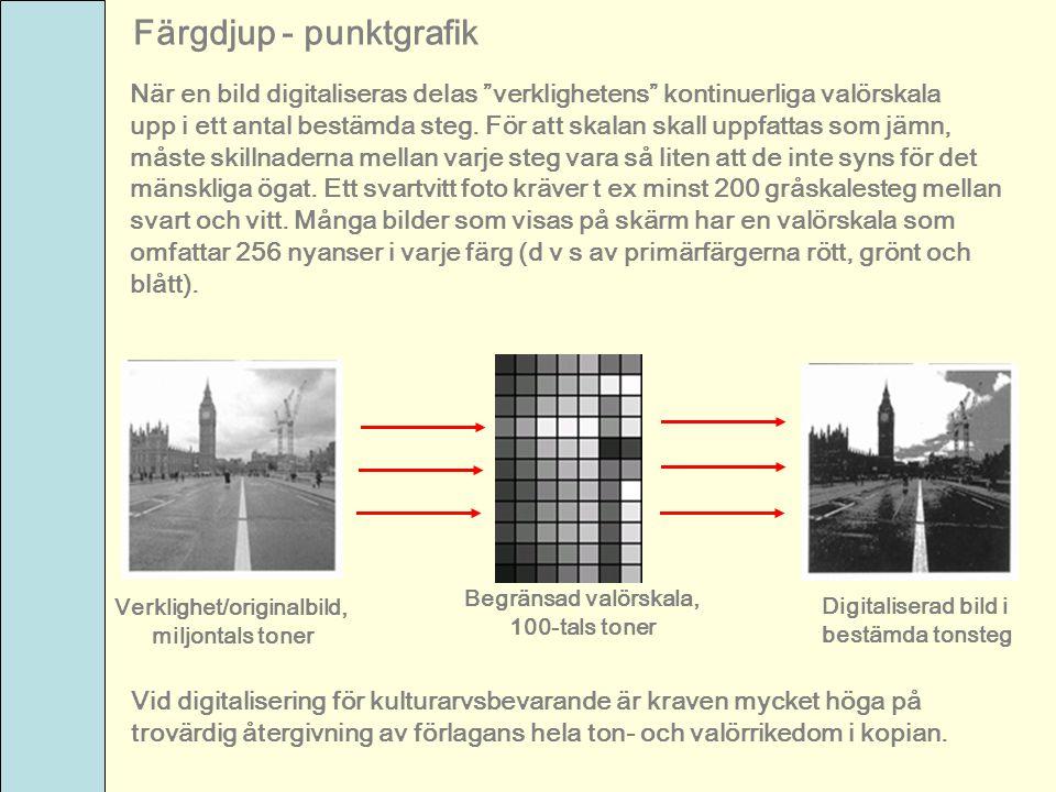 """Färgdjup - punktgrafik När en bild digitaliseras delas """"verklighetens"""" kontinuerliga valörskala upp i ett antal bestämda steg. För att skalan skall up"""