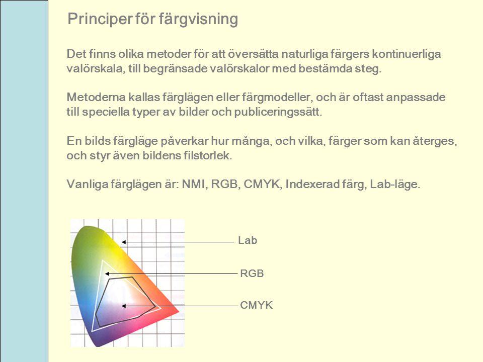 Principer för färgvisning Det finns olika metoder för att översätta naturliga färgers kontinuerliga valörskala, till begränsade valörskalor med bestäm