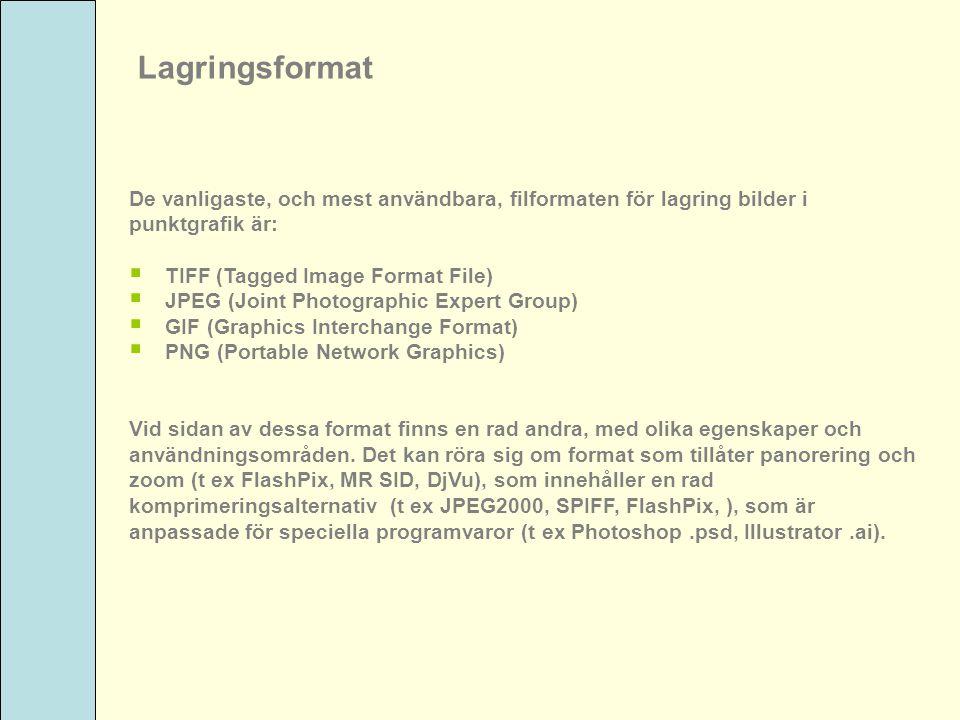 Lagringsformat De vanligaste, och mest användbara, filformaten för lagring bilder i punktgrafik är:  TIFF (Tagged Image Format File)  JPEG (Joint Ph