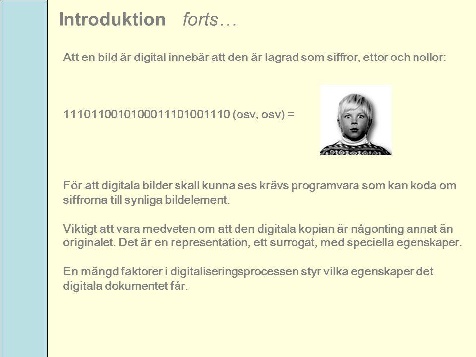 Introduktion forts… Att en bild är digital innebär att den är lagrad som siffror, ettor och nollor: 1110110010100011101001110 (osv, osv) = För att dig