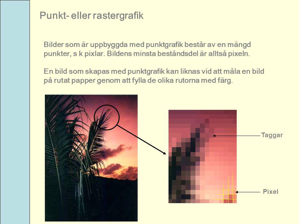 Punkt- eller rastergrafik Bilder som är uppbyggda med punktgrafik består av en mängd punkter, s k pixlar. Bildens minsta beståndsdel är alltså pixeln.