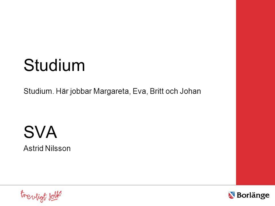 Studium Studium. Här jobbar Margareta, Eva, Britt och Johan SVA Astrid Nilsson