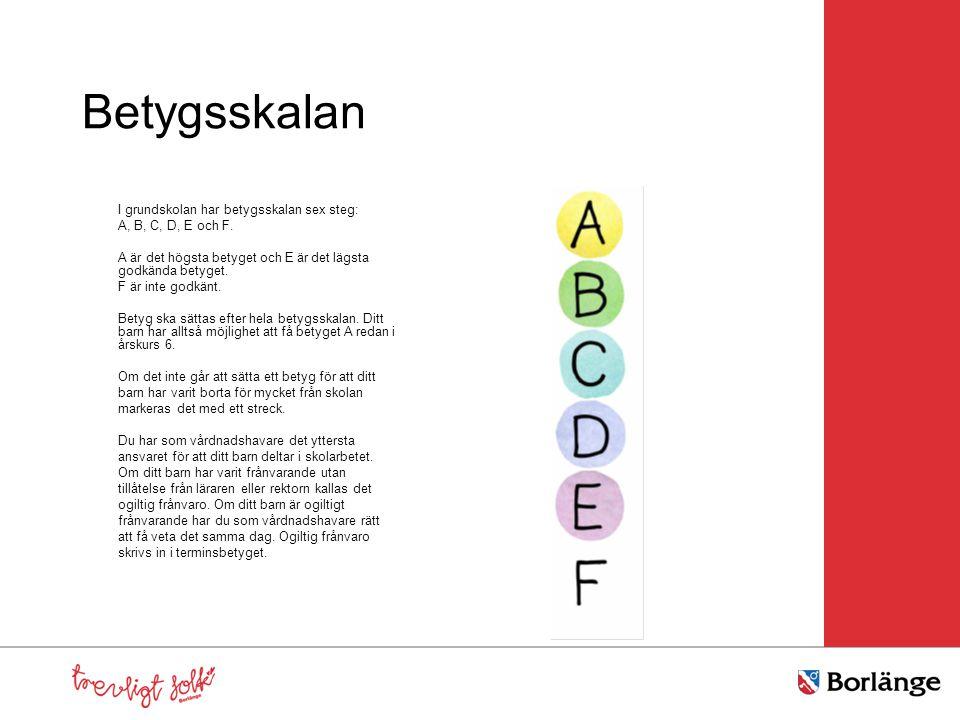 Betygsskalan I grundskolan har betygsskalan sex steg: A, B, C, D, E och F. A är det högsta betyget och E är det lägsta godkända betyget. F är inte god