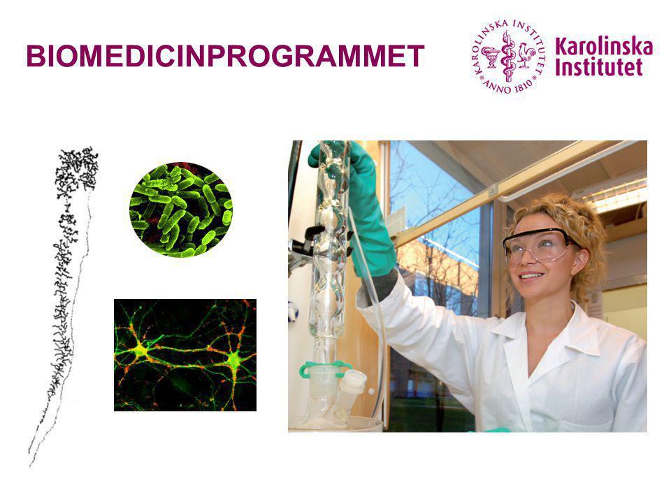Biomedicininformatör 20072 BIOMEDICIN – vad är det.