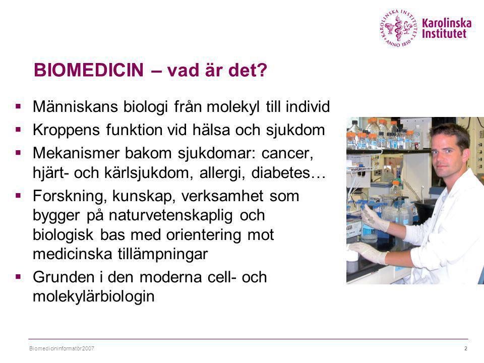 Biomedicininformatör 20073 KI-doktorand 51% annan doktorand 5% postdoc 9% vidareutbildning 4% annat arbete 6% läkemedelsindustri 16% annan forskn, KI- arbete 7% media, info 2% BIOMEDICINARE – vad gör de.