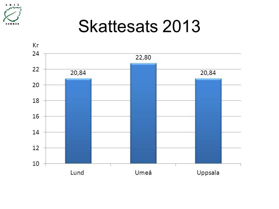 Skattesats 2013 Kr
