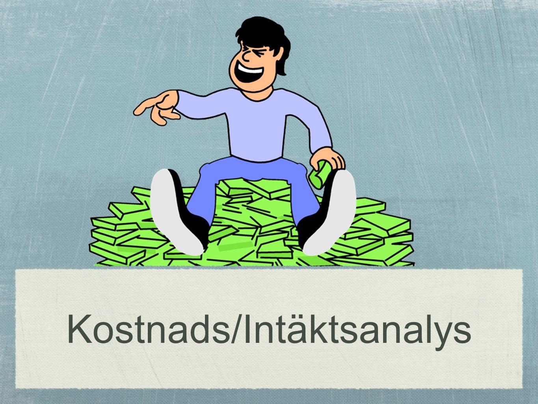 Kostnads/Intäktsanalys