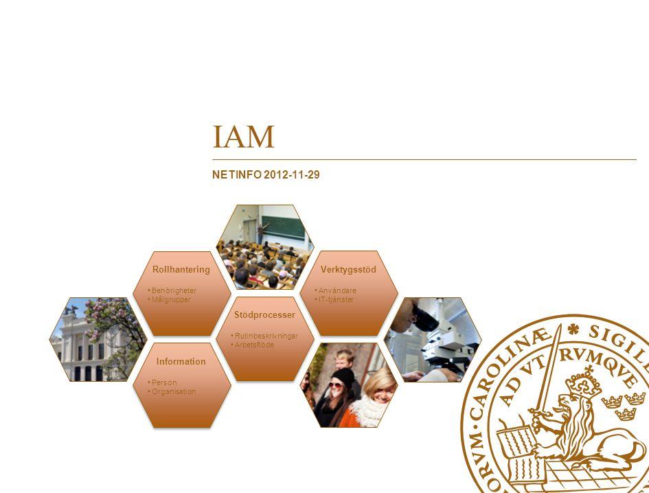 Information Person Organisation Stödprocesser Rutinbeskrivning ar Arbetsflöde Rollhantering Behörigheter Målgrupper Verktygsstöd Användare IT-tjänster