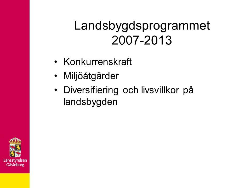 Landsbygdsprogrammet 2007-2013 Konkurrenskraft Miljöåtgärder Diversifiering och livsvillkor på landsbygden