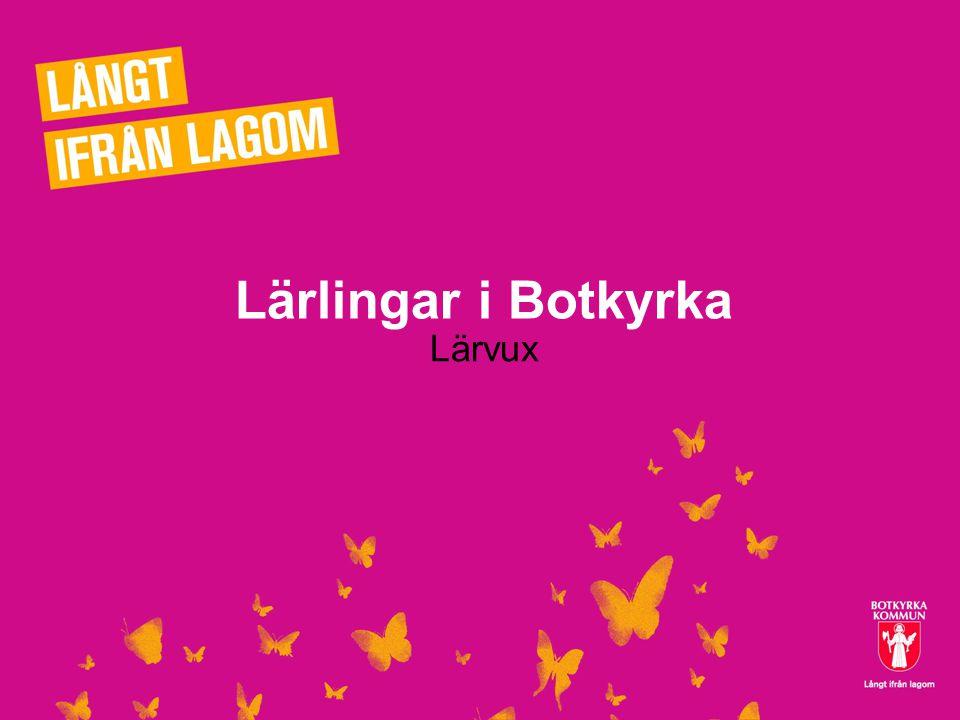 Lärlingar i Botkyrka Lärvux
