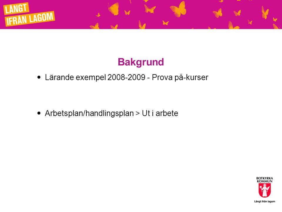 Bakgrund Lärande exempel 2008-2009 - Prova på-kurser Arbetsplan/handlingsplan > Ut i arbete