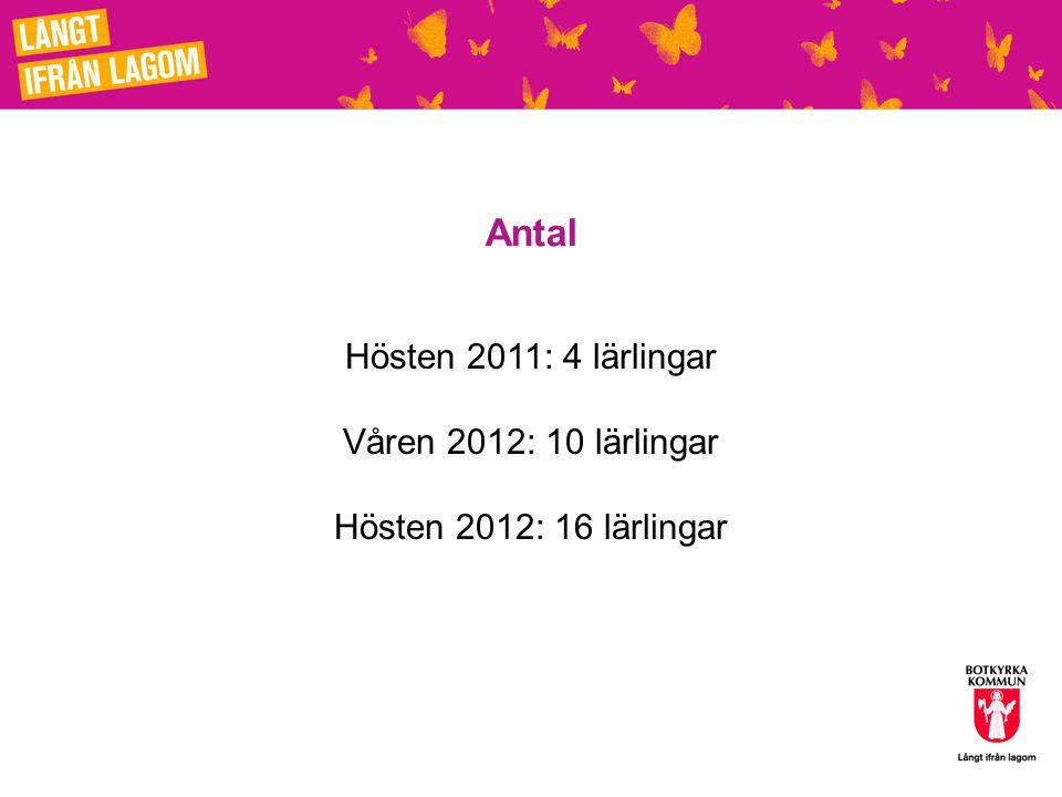 Antal Hösten 2011: 4 lärlingar Våren 2012: 10 lärlingar Hösten 2012: 16 lärlingar