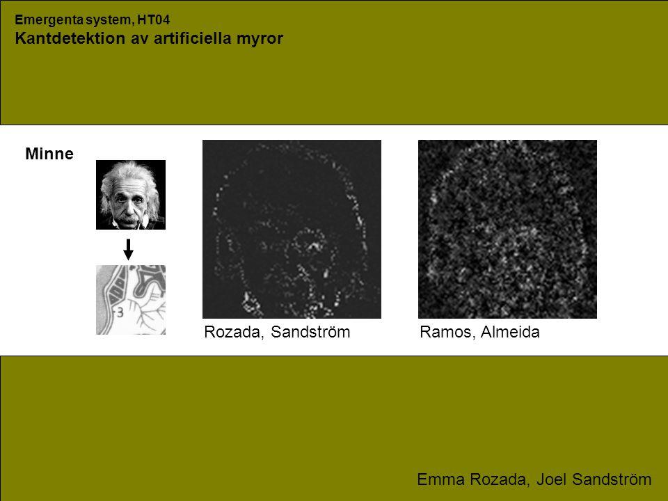 Emergenta system, HT04 Kantdetektion av artificiella myror Emma Rozada, Joel Sandström Minne Rozada, SandströmRamos, Almeida